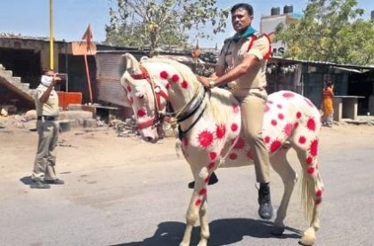 Andhra Police paint horse with Covid19 to create awareness