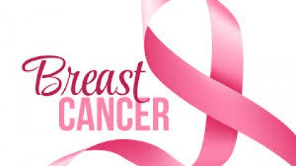 Higher dietary fibre reduces breast cancer